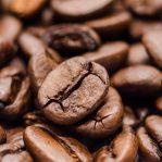 コーヒーの講座